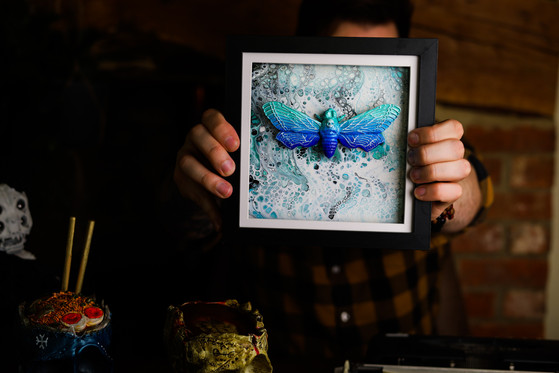 Artic Death Head Hawk Moth