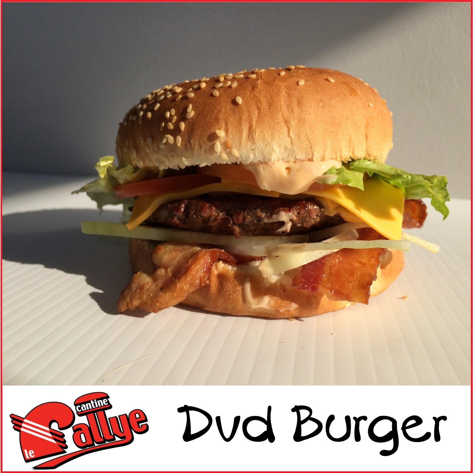 Dvd Burger
