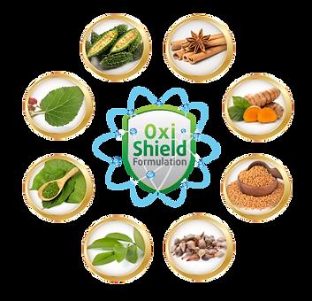 oxi shield 2.png