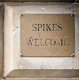 Spikes Welcome.jpg
