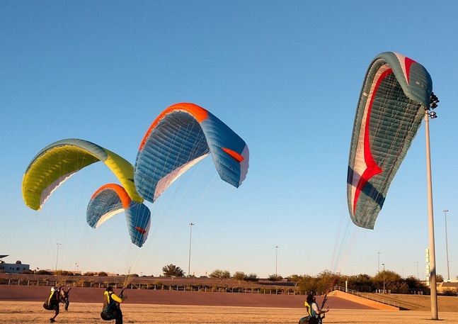 Kiting in the Park