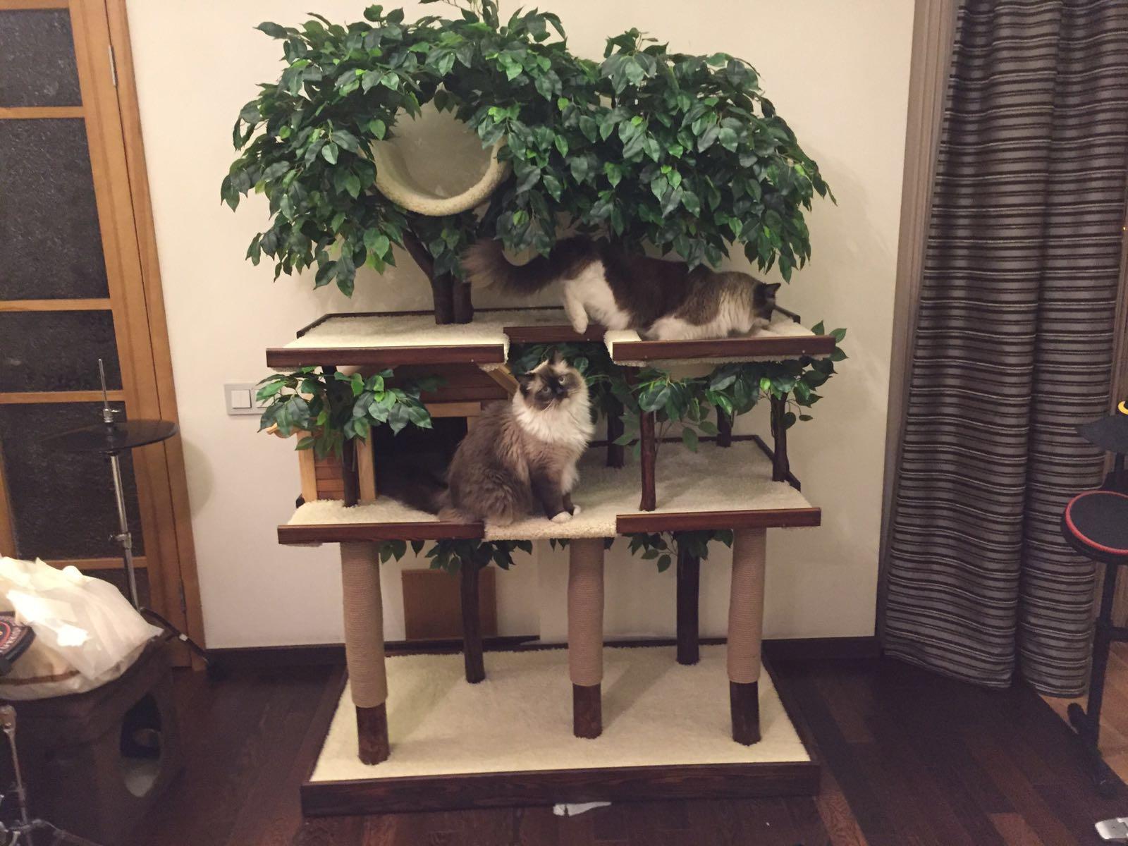 Большой домик для кошек с домиком и гамаком