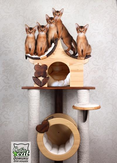 Деревянный домик для кошки CatCoutry