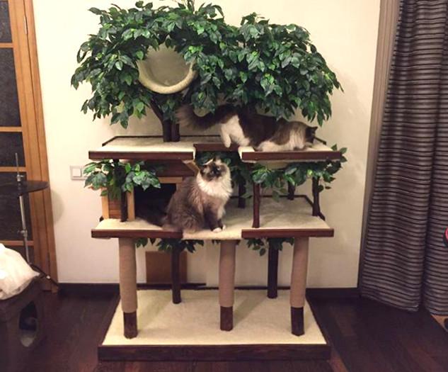 Домик-для-кошки-CatioCat-SkyGarden.jpg