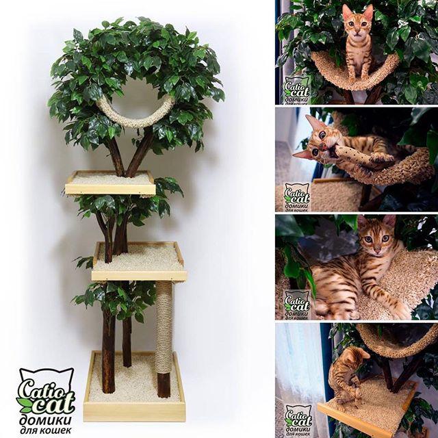Дерево для кошки с тремя полками Catio 2