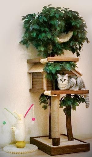 Дерево-домик для кошки Catio3