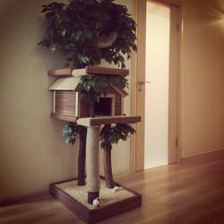 Дерево для кошки Catio3