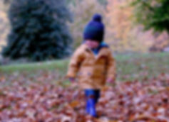 Boy automne