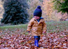 LDAK Parent and Caregiver Survey October - November 2020