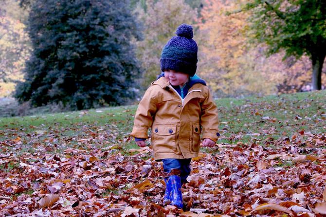 Tri-County Kids Weekday Picks: Lego Club, Knee-High Naturalists & a Mini Hike! October 3- 7, 201