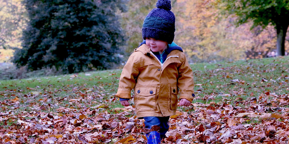 Autumn Welly Walk