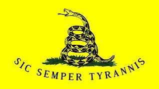 gadsden_flag__sic_semper_tyrannis__by_ud