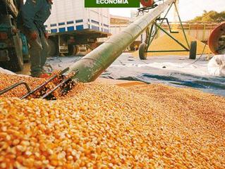 Intermediarios impactan en precio de algunos alimentos