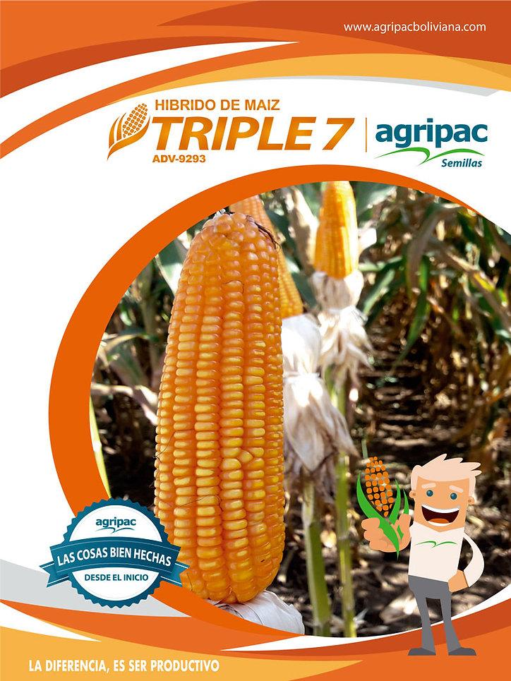 triple71.jpg