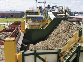 Exportadores piden liberar venta externa de azúcar antes de la zafra