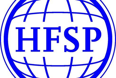 HFSP grant awarded