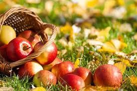 Яблочный спас в бане Чапаевская г. Тольятти. ПРИМЕТЫ.