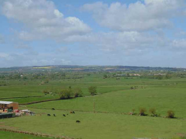The local fields from the Church Tower