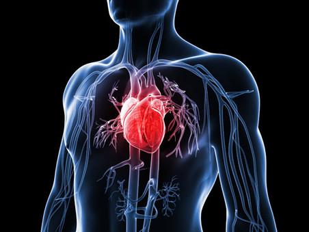 Cardiovascular disease – the big one