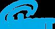 logo_nLight.png
