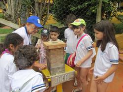 Caixa de abelha Jataí