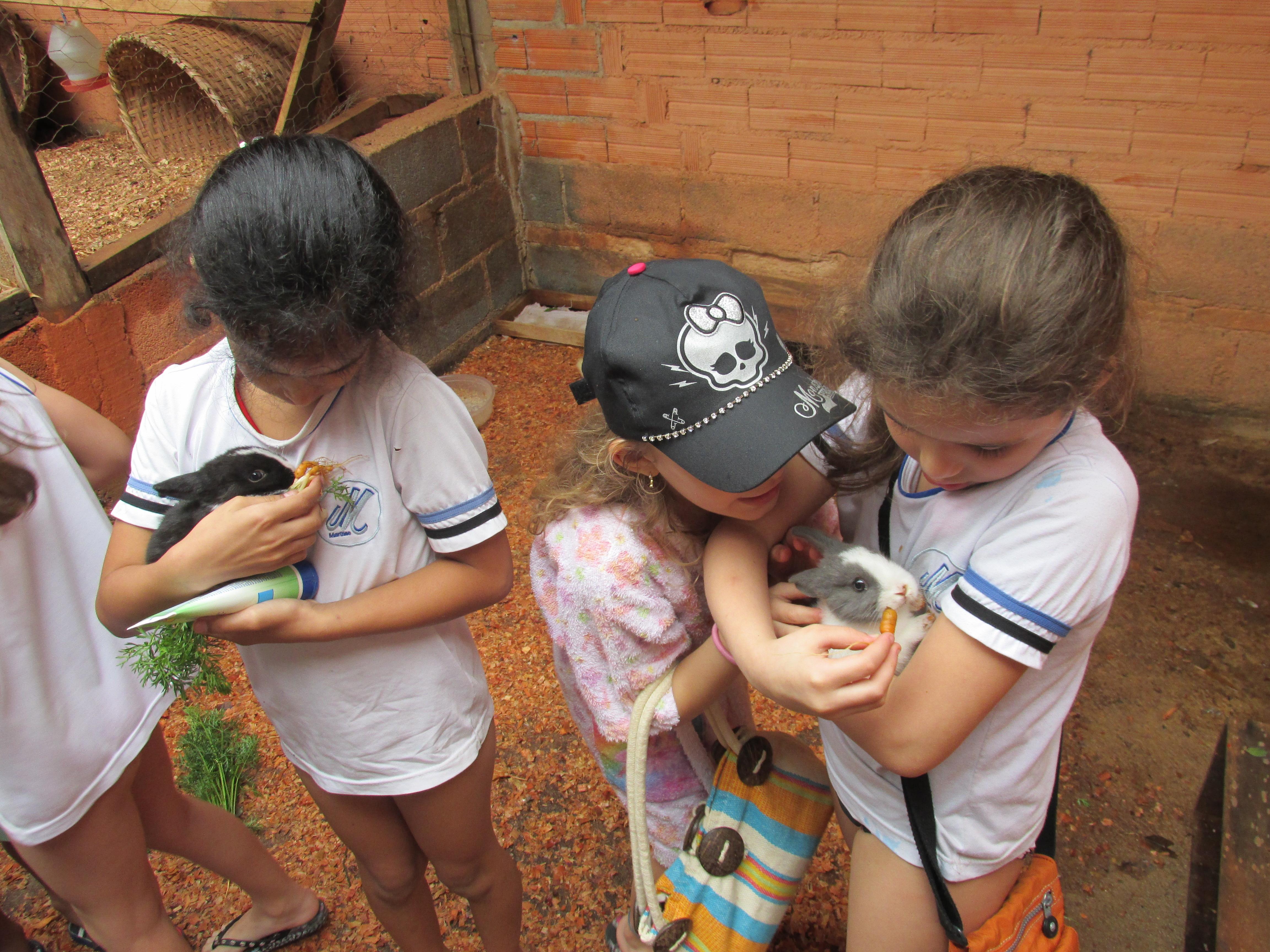 Crianças e bichinhos