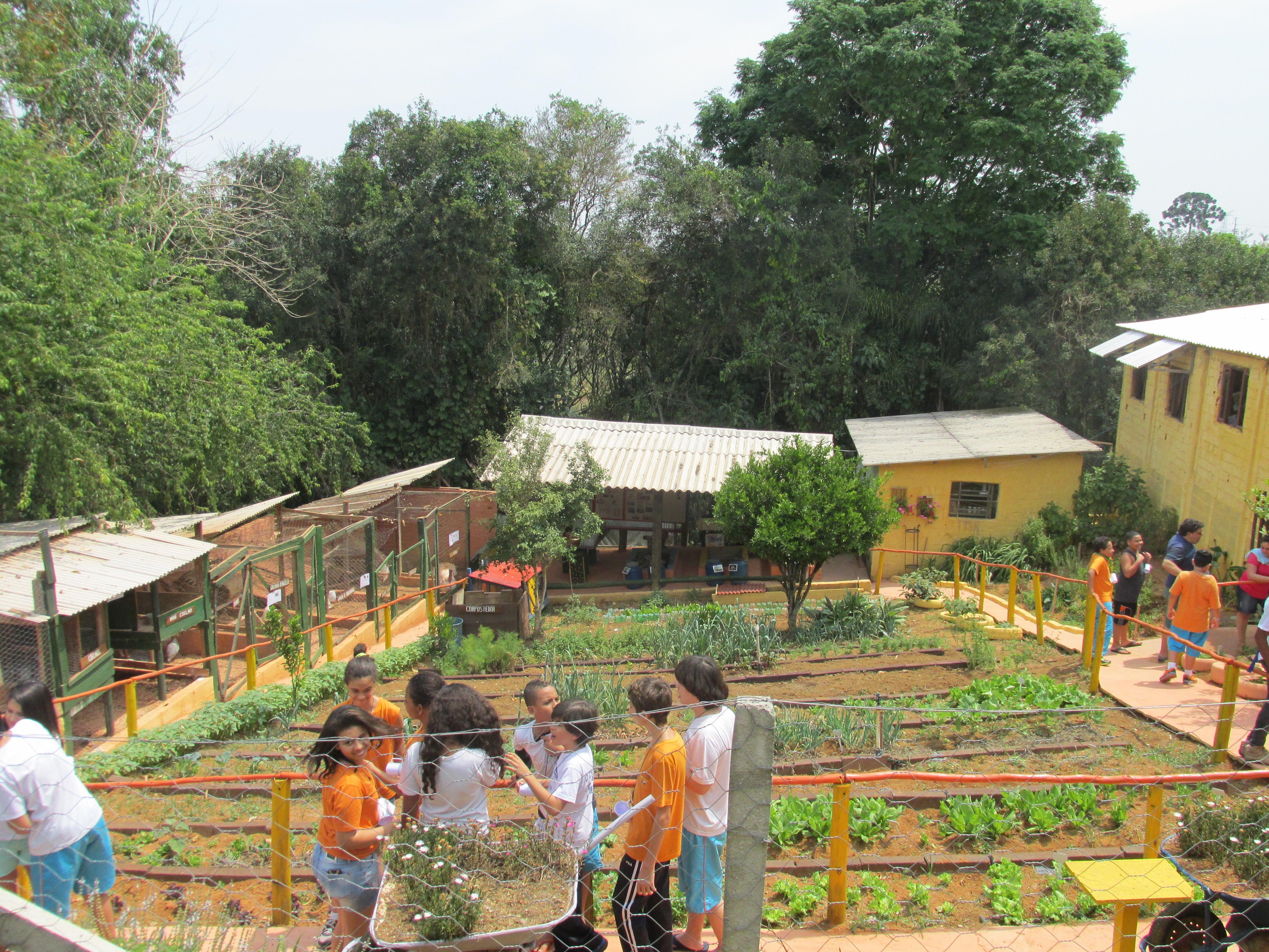 Crianças em visita à horta