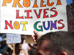 Why Doesn't the USA Learn from Other Countries when it comes to Gun Control?