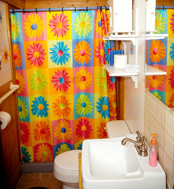 Cabin 6 bathroom