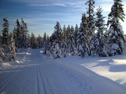L'hiver sur la station...