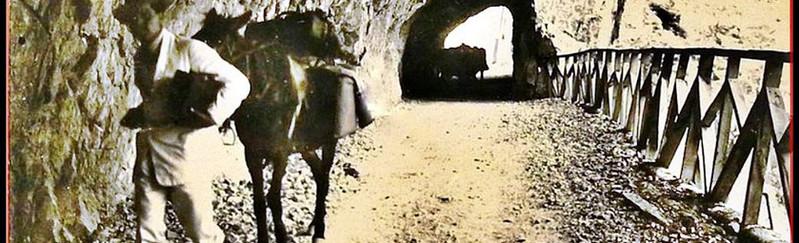 Tünel Servis Yolları