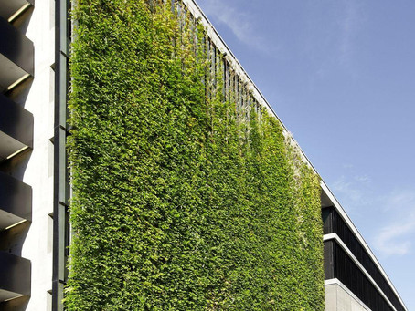 Introduction of green in the urban jungle.