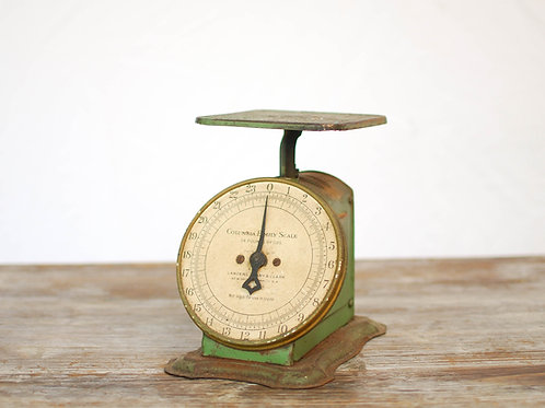 JOHNNY APPLE Scale