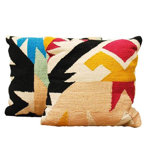 COLOR CRUSH Pillows