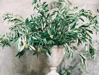 El olivo: la última tendencia en decoración de bodas.