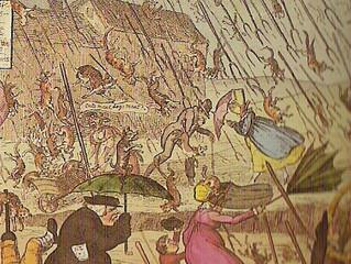 #Issue 85: Mitos muy reales, como que lluevan ranas.