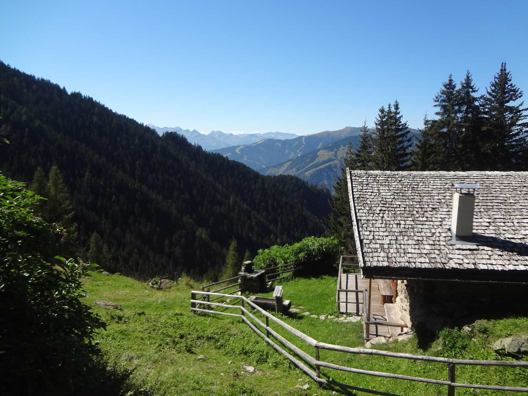 Pinzgau_Almblick