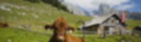 Vandra i Österrike - Vandra utan packning