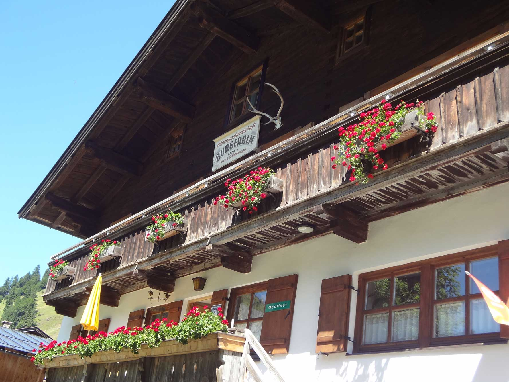 Pinzgau_Burgeralm