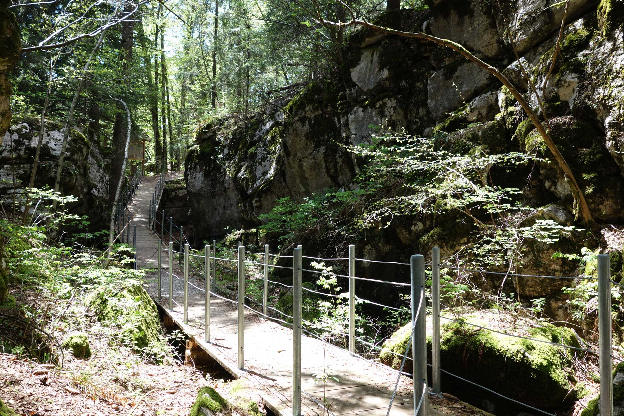 Meran-Gardasee_Wanderweg_Andalo_Molveno.