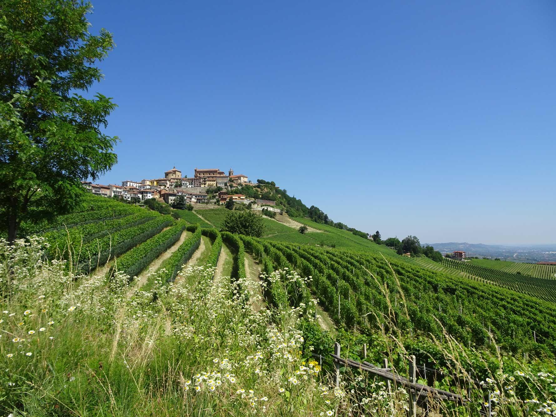 Piemont-Ligurien-Piemont-Langhe-1
