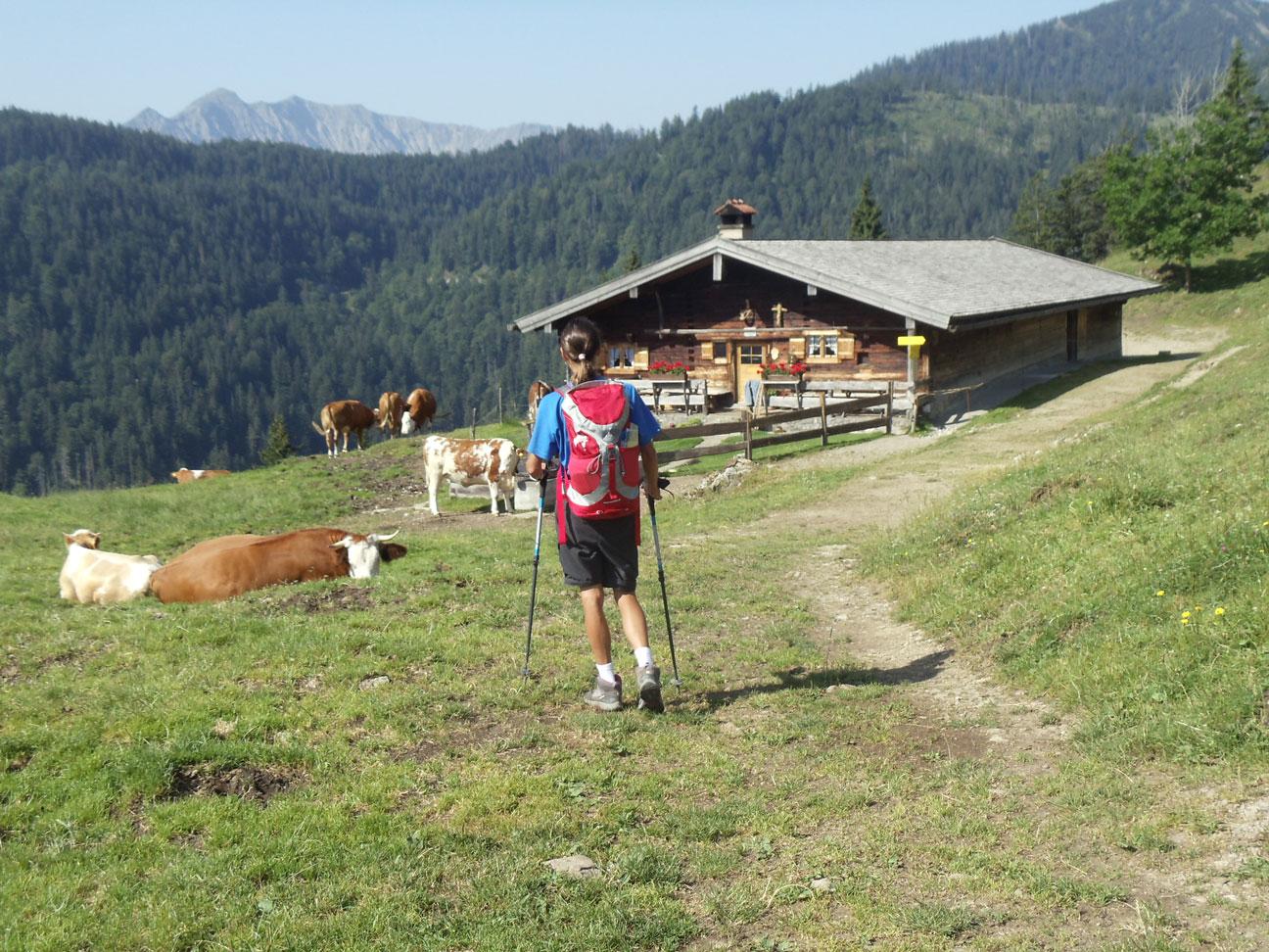 Bayerische-Alpen_Alm_Wanderer_1