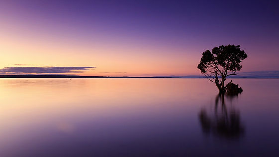 sunset-1373171_1920.jpg