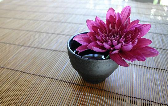 chrysanthemum-757439_1920.jpg