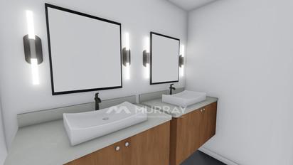 8501 Tralee Rd Second Basement Bath.jpg