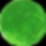 paint-circle-green-1.png