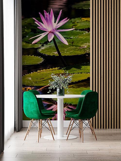 Fleurs de Lotus 3