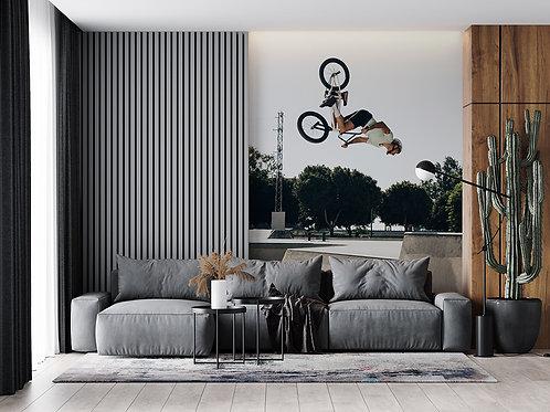 Figure à vélo