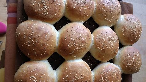 Hamburguer bread.jpg