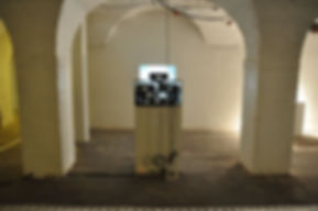 The Potential of Recombinant Bodies, Ctrl-c Exhibition, 2014, The Crypt, Bristol